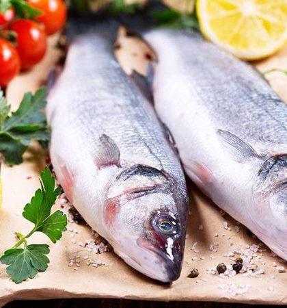 9 Amazing Health Benefits of Seafood